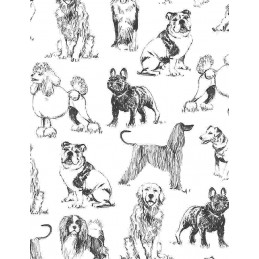 100% Cotton Fabric Timeless Treasures Sketched Realistic Dog Breeds Dogs