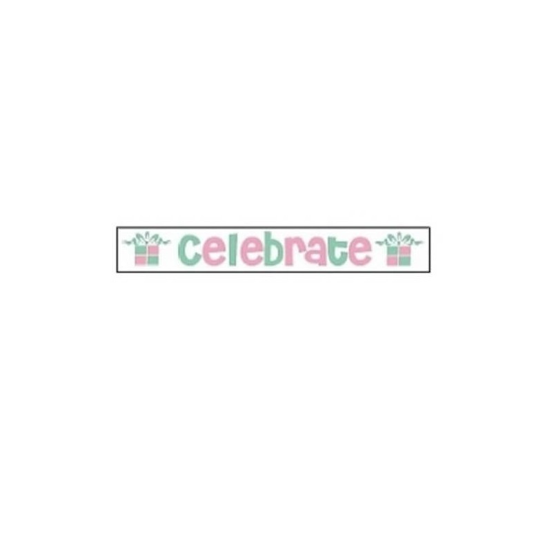 25mm x 3m Celebrate Party Birthday Ribbon Multi Colour Celebration