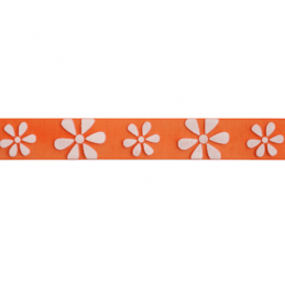 15mm x 3.5m White Daisies On Multi Colour Ribbon Celebration