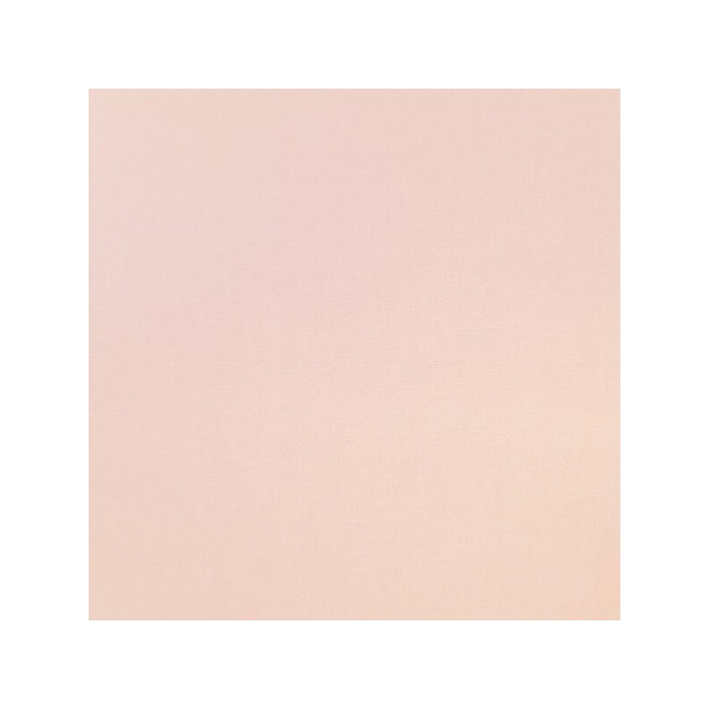 Col 1. Ice Pink