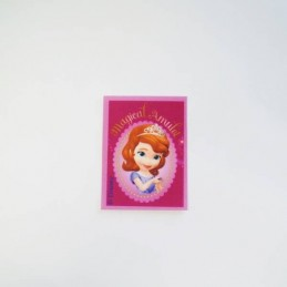 Disney Princess Sofia Small Rectangle Woven Patch Iron On Sew On Motif Applique