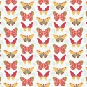 102 Butterflies on White