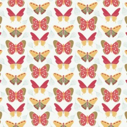 102 Butterflies on White