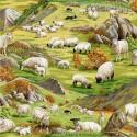 89310 104 Country Sheep