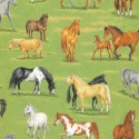 89310 105 Country Horses and Foals