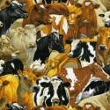 89310 106 Country Packed Cows