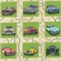 89020 101 Classic Cars Frames