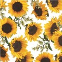 Vinyl PVC Tablecloth Easy Wipe Clean Sunflowers White