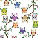 Vinyl PVC Tablecloth Easy Wipe Clean Owls Day