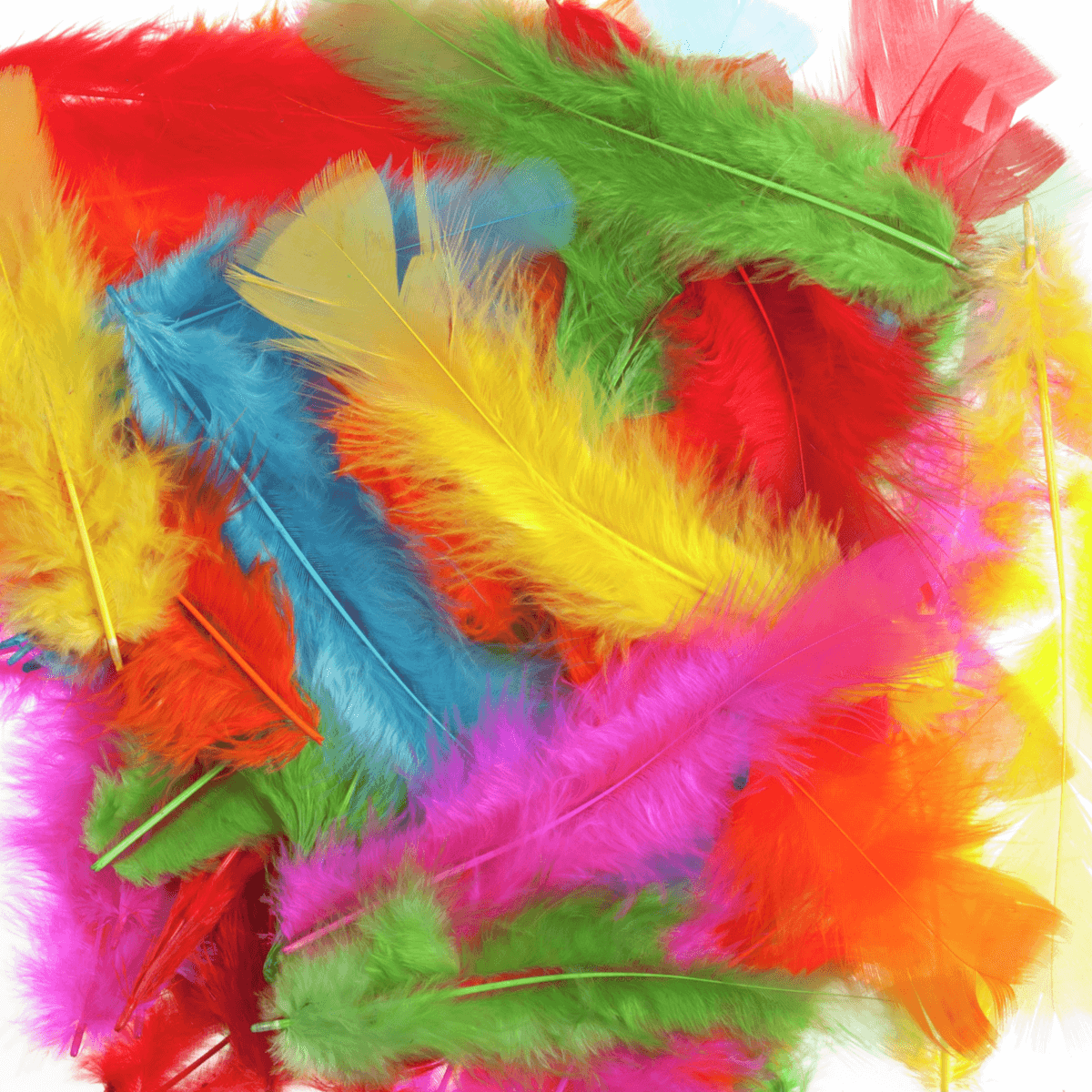 Mixed Coloured Trimits Feathers 50 Large