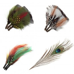 Assorted Plumes Feathers or Peacock Feather Decoration Craft