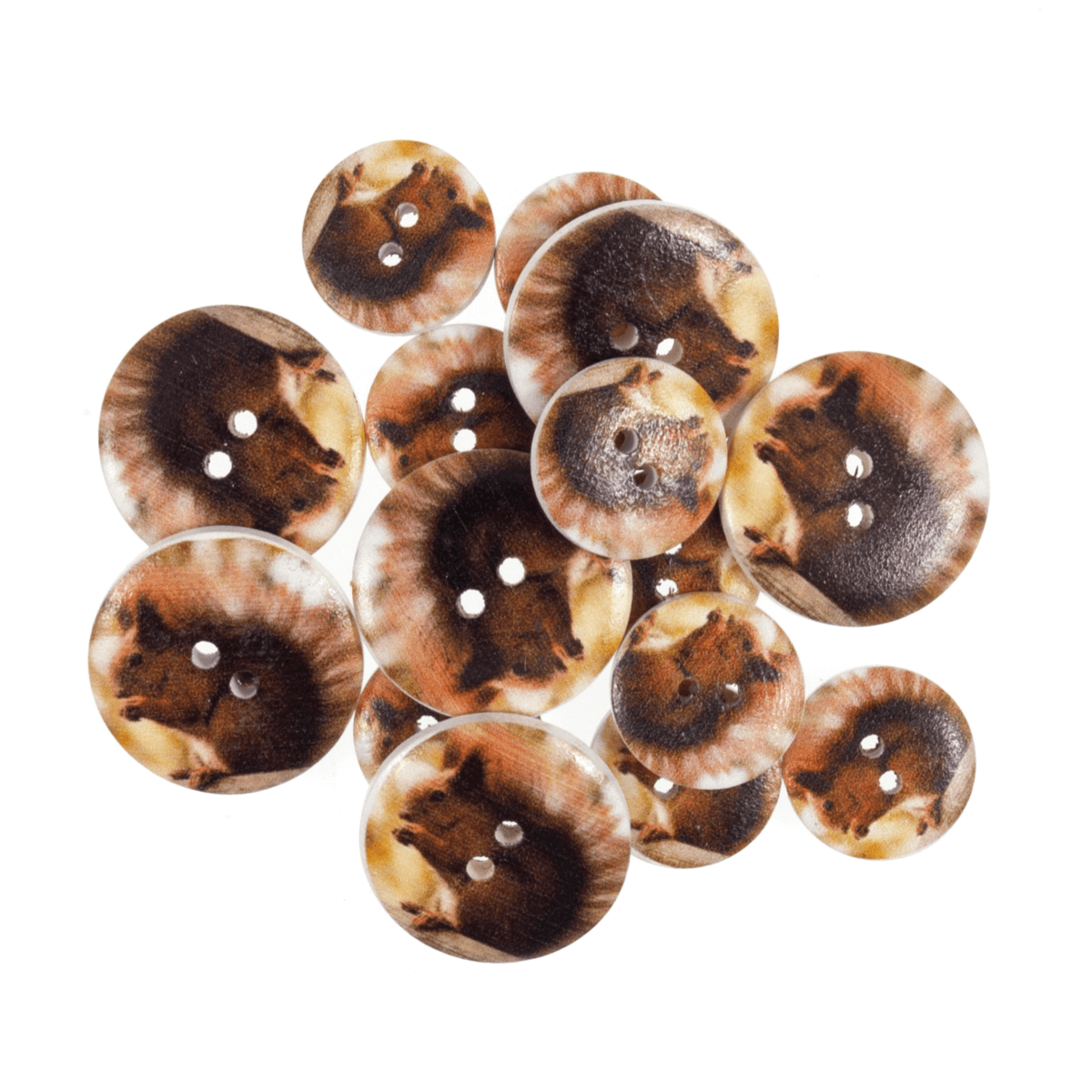 Assorted Branch Bird Wooden Buttons 15 Pack Sizes From 15mm - 25mm