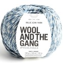 Wool and the Gang Billie Jean Upcycled DK Yarn 100g Ball Knitting Crochet Craft Dirty Denim