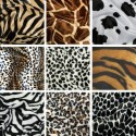 Animal Skin Print Velboa Faux Fur Velour Pony Skin 145cm Wide