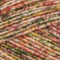 Sirdar Dapple DK Double Knit Yarn Wool 100g Ball Colour Effect Mottled Knitting Harvest
