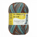 Regia Colour 4 PLY Knitting Crochet Knit Yarn Craft Wool Colourful 100g Ball 2886 Fuji Rock