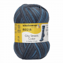 Regia Colour 4 PLY Knitting Crochet Knit Yarn Craft Wool Colourful 100g Ball 2890 Midtown