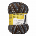 Regia Colour 4 PLY Knitting Crochet Knit Yarn Craft Wool Colourful 100g Ball 2894 Hudson Heights