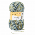 Regia Colour 4 PLY Knitting Crochet Knit Yarn Craft Wool Colourful 100g Ball 4767 Countrylife Sage