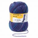 Regia Colour 4 PLY Knitting Crochet Knit Yarn Craft Wool Colourful 100g Ball 4995 Mood Daydream