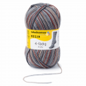 Regia Colour 4 PLY Knitting Crochet Knit Yarn Craft Wool Colourful 100g Ball 6029 Vermont Graphit