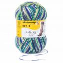 Regia Colour 4 PLY Knitting Crochet Knit Yarn Craft Wool Colourful 100g Ball 7205 Supajacquard Pfau