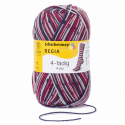 Regia Colour 4 PLY Knitting Crochet Knit Yarn Craft Wool Colourful 100g Ball 7708 Snowflake Skimuetze