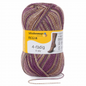 Regia Colour 4 PLY Knitting Crochet Knit Yarn Craft Wool Colourful 100g Ball 7956 Atelier Wild Patina