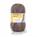 Regia Colour 4 PLY Knitting Crochet Knit Yarn Craft Wool Colourful 100g Ball 7955 Atelier Patina