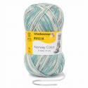 Regia Colour 6 PLY Knitting Crochet Knit Yarn Craft Wool 150g Ball 2787 Norway Voss