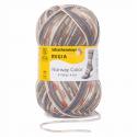 Regia Colour 6 PLY Knitting Crochet Knit Yarn Craft Wool 150g Ball 2791 Norway Trondheim