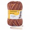 Regia Colour 8 PLY Stripe Knitting Crochet Knit Yarn Craft Wool 150g Ball