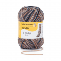 Regia Colour 8 PLY Stripe Knitting Crochet Knit Yarn Craft Wool 150g Ball 8073 Stripe Ski Lodge