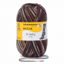 Regia Colour 8 PLY Stripe Knitting Crochet Knit Yarn Craft Wool 150g Ball 8083 Colorito Mountain