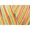 Regia Cotton Tutti Fruitti 4 PLY Knitting Crochet Knit Yarn Craft Wool 100g Ball 2417 Papaya