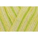 Regia Cotton Tutti Fruitti 4 PLY Knitting Crochet Knit Yarn Craft Wool 100g Ball 2424 Lemon
