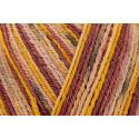 Regia Cotton Tutti Fruitti 4 PLY Knitting Crochet Knit Yarn Craft Wool 100g Ball 2425 Maracuja