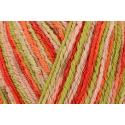 Regia Cotton Tutti Fruitti 4 PLY Knitting Crochet Knit Yarn Craft Wool 100g Ball 2426 Apple