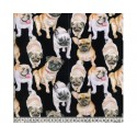 Bulldogs Pugs 100% Digital Cotton Fabric Little Johnny Range 145cm Wide