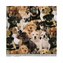 Puppies 100% Digital Cotton Fabric Little Johnny Range 145cm Wide