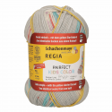 Regia Arne & Carlos Kids Pairfect Socks 4 PLY Knitting Yarn Craft 60g Ball 2984 Ylve