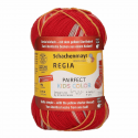 Regia Arne & Carlos Kids Pairfect Socks 4 PLY Knitting Yarn Craft 60g Ball 2985 Kine
