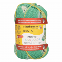 Regia Arne & Carlos Kids Pairfect Socks 4 PLY Knitting Yarn Craft 60g Ball 2987 Per
