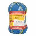 Regia Arne & Carlos Kids Pairfect Socks 4 PLY Knitting Yarn Craft 60g Ball 2989 Knut