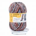 Regia Arne & Carlos Kids Pairfect Socks 4 PLY Knitting Yarn Craft 150g Ball 3655 Fall Night