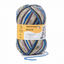 Regia Arne & Carlos Kids Pairfect Socks 4 PLY Knitting Yarn Craft 100g Ball 2463 Tokke