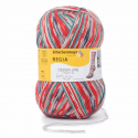 Regia Arne & Carlos Kids Pairfect Socks 4 PLY Knitting Yarn Craft 100g Ball 3760 Garden