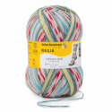 Regia Arne & Carlos Kids Pairfect Socks 4 PLY Knitting Yarn Craft 100g Ball 3766 Seljord