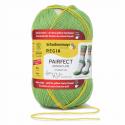 Regia Arne & Carlos Kids Pairfect Socks 4 PLY Knitting Yarn Craft 100g Ball 9095 Pairfect Kollen