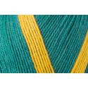 Regia Arne & Carlos Kids Pairfect Socks 4 PLY Knitting Yarn Craft 100g Ball 9136 Pairfect Garden